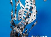 a Seahorse Jerry Schmidt Steel 4'4''x2'6''