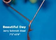 Beautiful Day Jerry Schmidt Steel 7'5''x5'8''